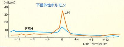 img004(基礎体温表)1.jpg