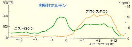 img004(基礎体温表)2.jpg